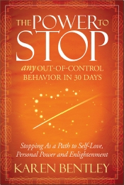 The Power To Stop book